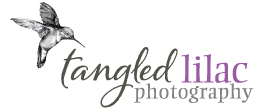 Sedona Wedding Photography |  Phoenix Wedding Photographers | Flagstaff Photographer