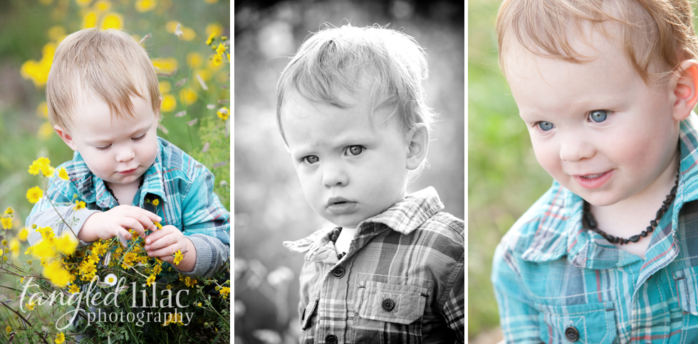 Sedona Wildflower Family Photographer
