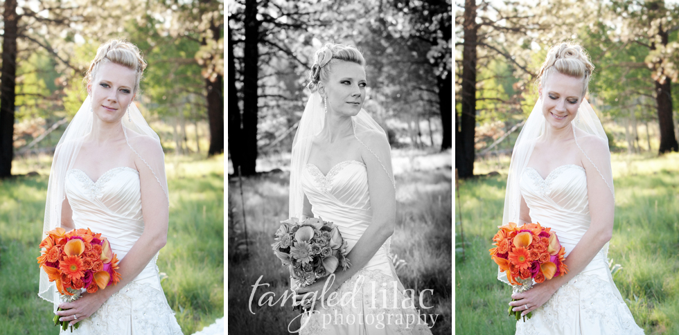 aspen bridal portrait
