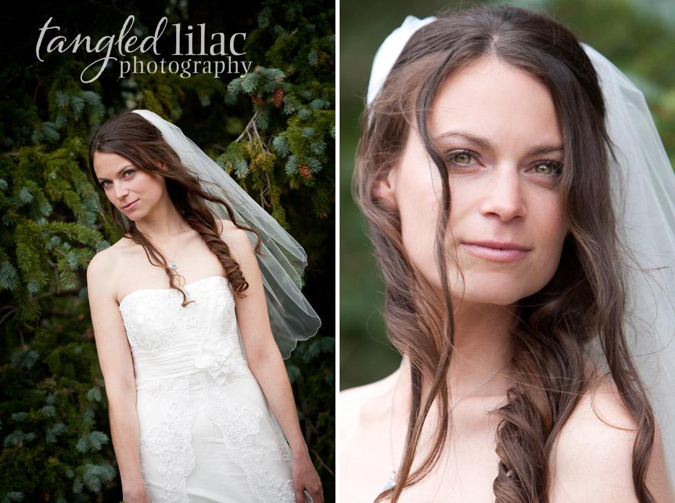 Bridal Mountain Portrait