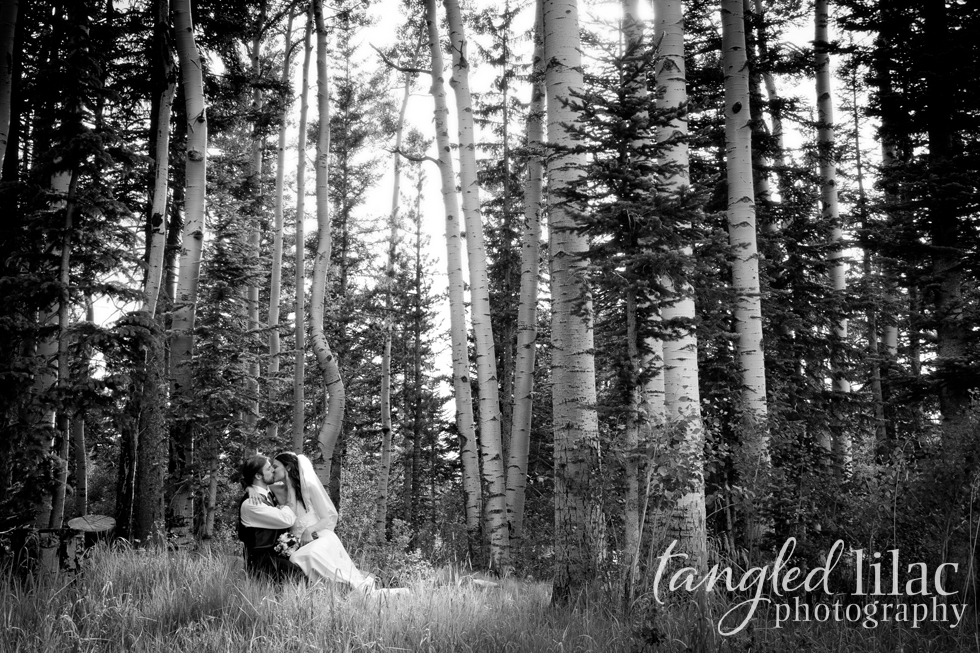 Aspen tree wedding