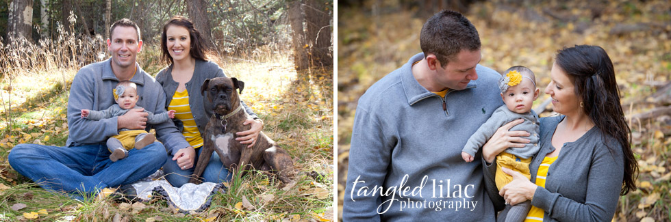Headband Family Fall Photography Outdoor Leaves Trees Dog