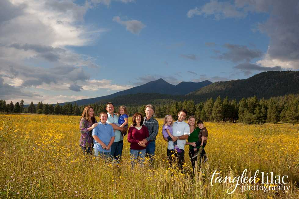 family_sunflower_flagstaff
