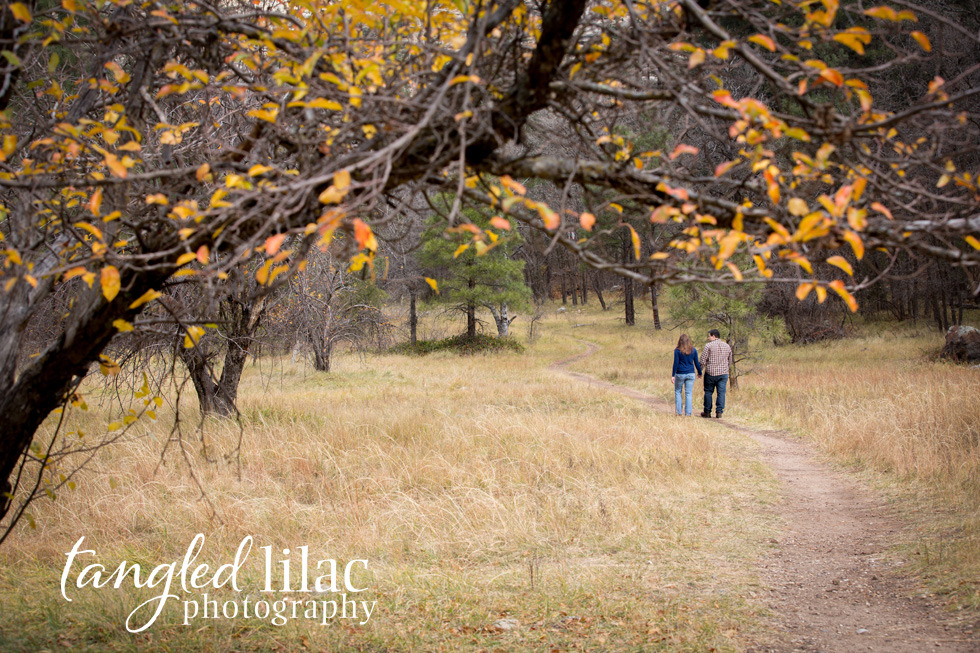 fall_engagement_sedona