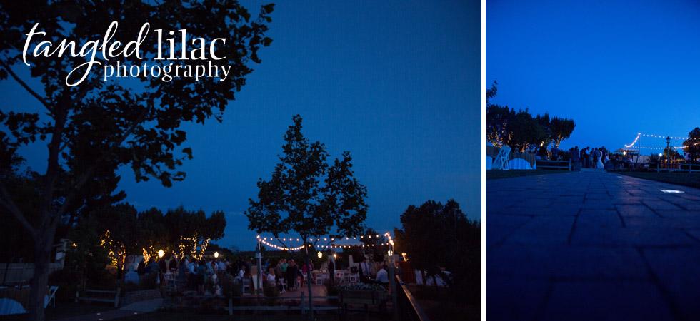 wedding_night_photography