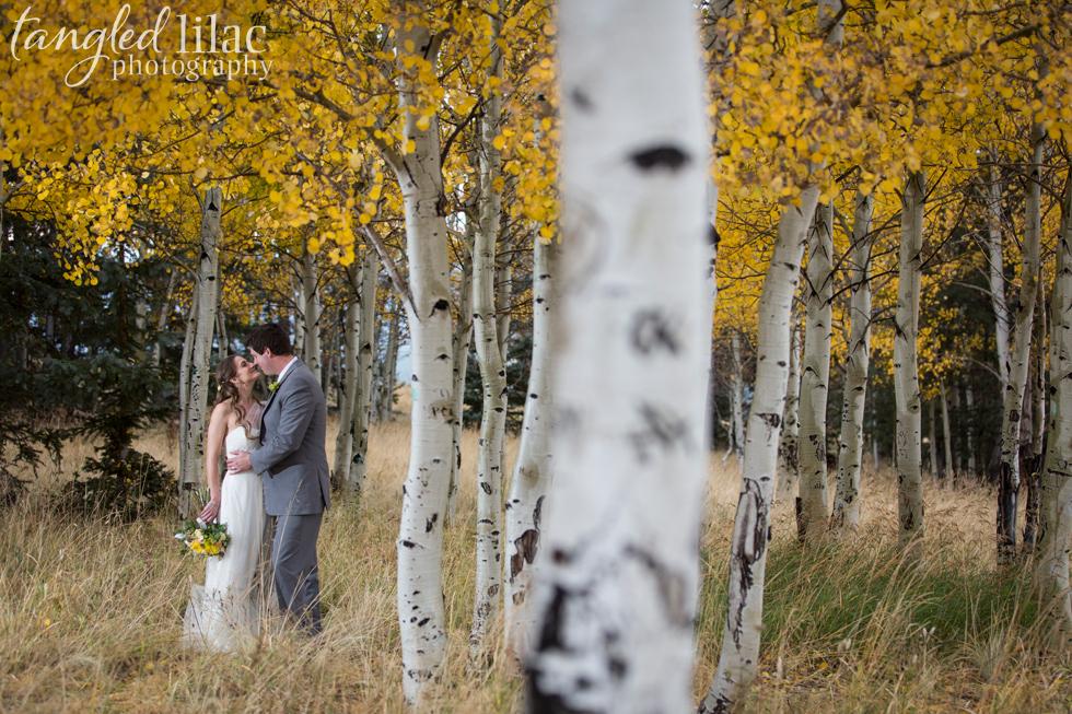 047-flagstaff-snow-wedding-fall