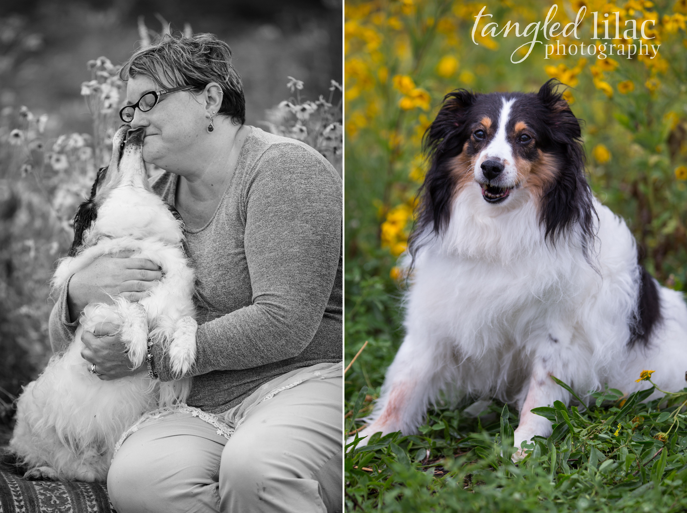 084-sedona-pet-photographer-flagstaff
