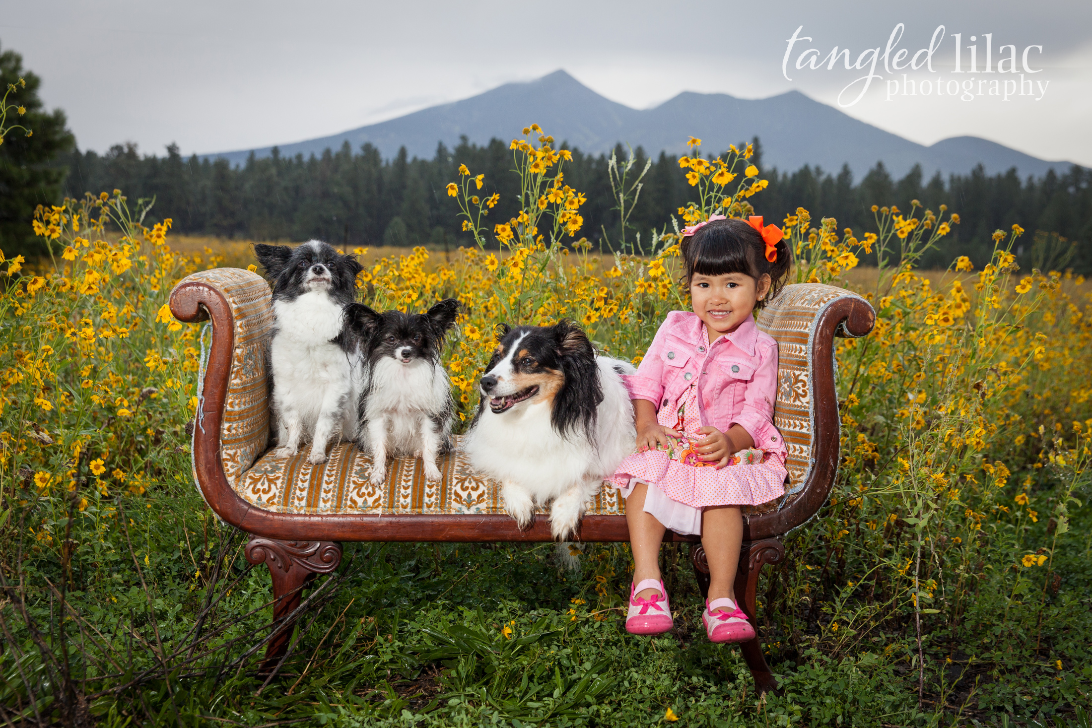 089-sedona-pet-photographer-flagstaff