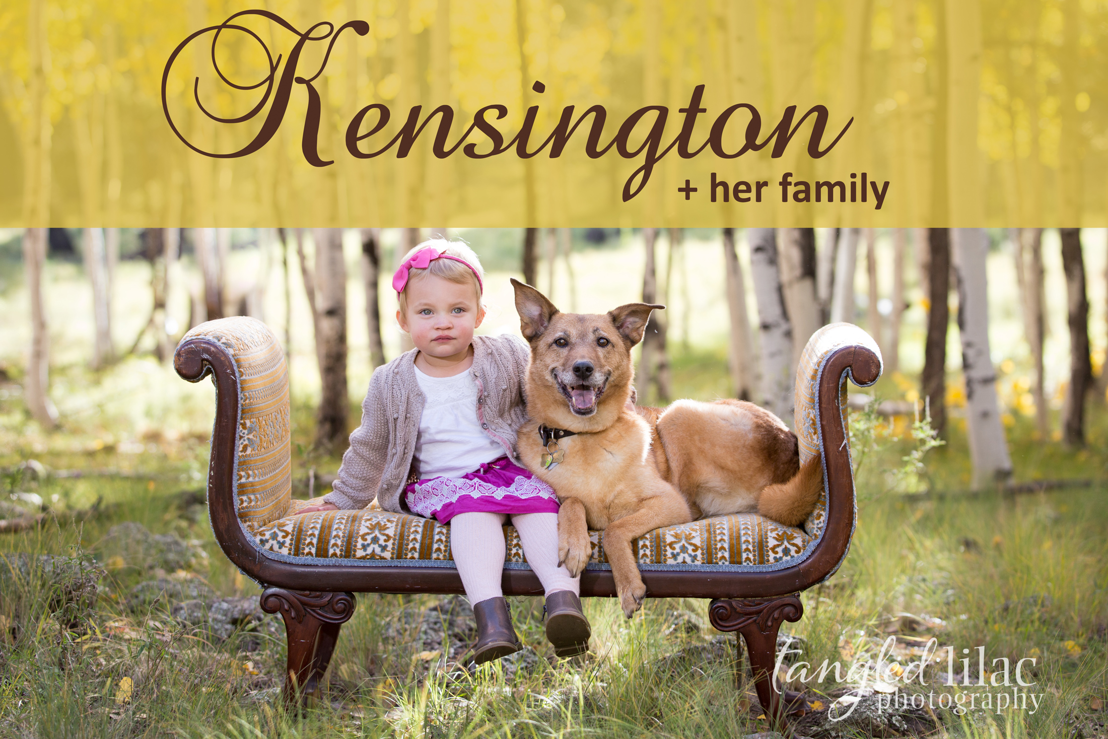 098-flagstaff-family-photographer-aspens-dogs-pets