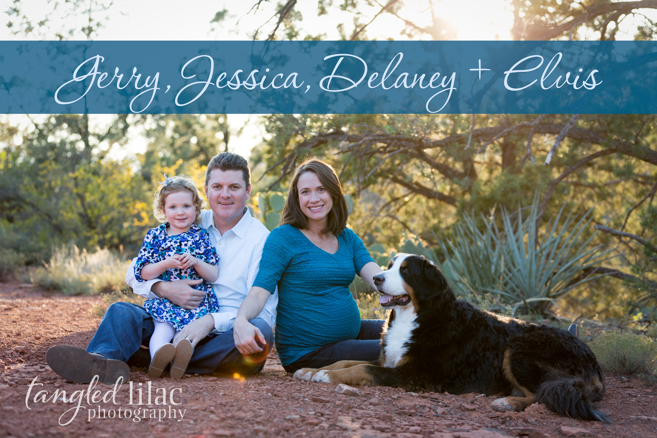 099-sedona-family-photographer-maternity-pet-dog-bernese-mountain-dog