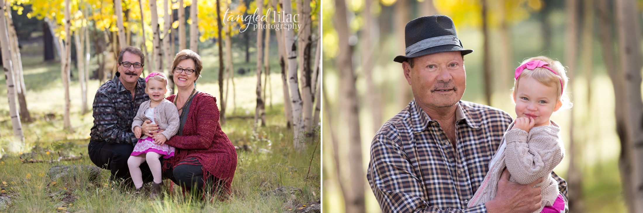 103-flagstaff-family-photographer-aspens-dogs-pets