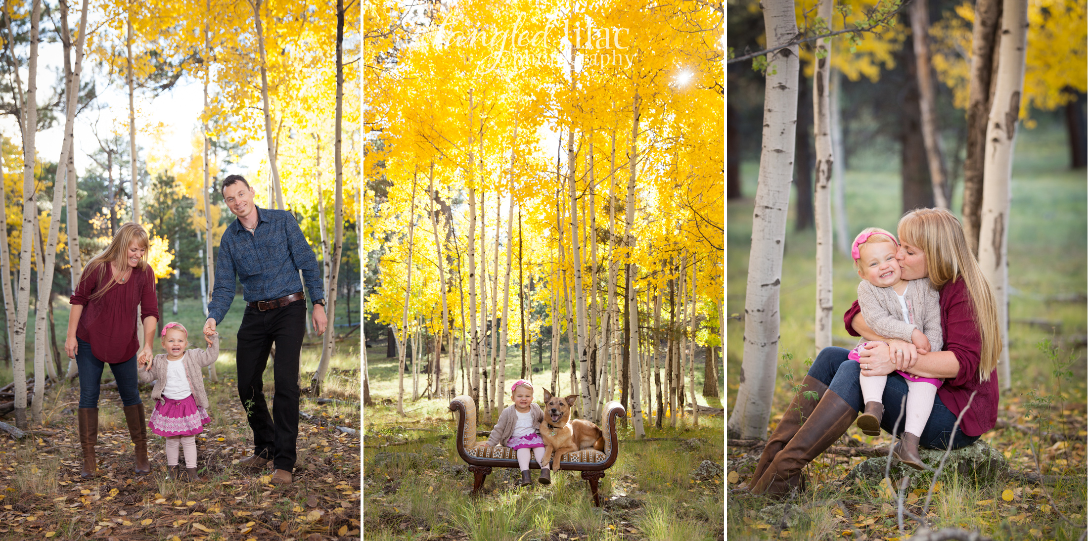 107-flagstaff-family-photographer-aspens-dogs-pets
