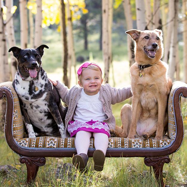 flagstaff-aspens-family