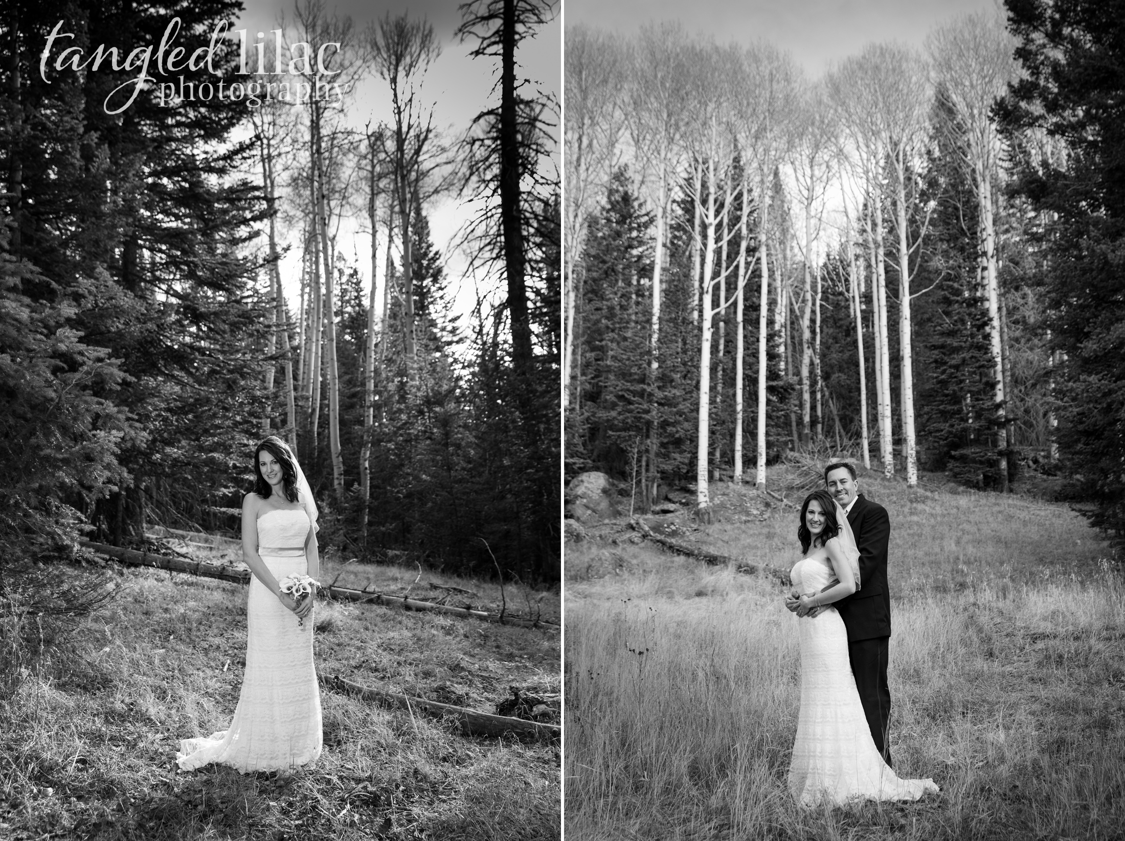 010-flagstaff-wedding-night-snowbowl-elopement
